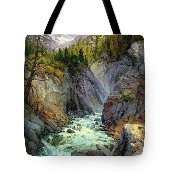 Hurricane River Tote Bag