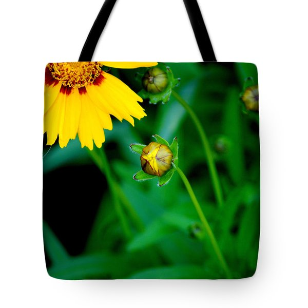 Illumination Tote Bag by Frozen in Time Fine Art Photography