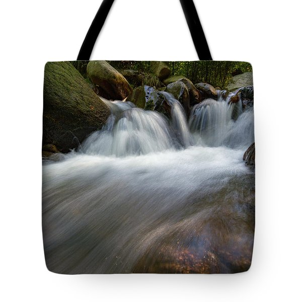Ilse, Harz Tote Bag