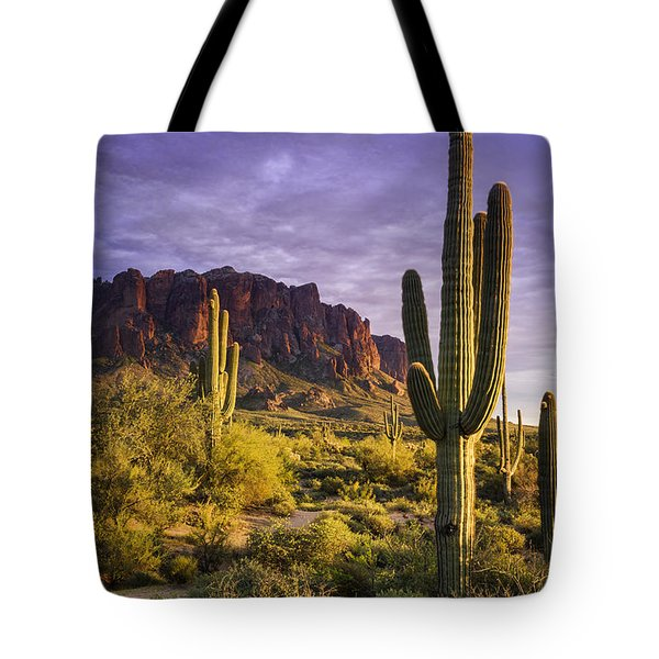In The Desert Golden Hour  Tote Bag