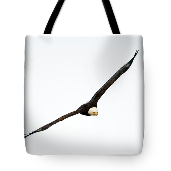 Tote Bag featuring the photograph Intense Stare by Mike Dawson