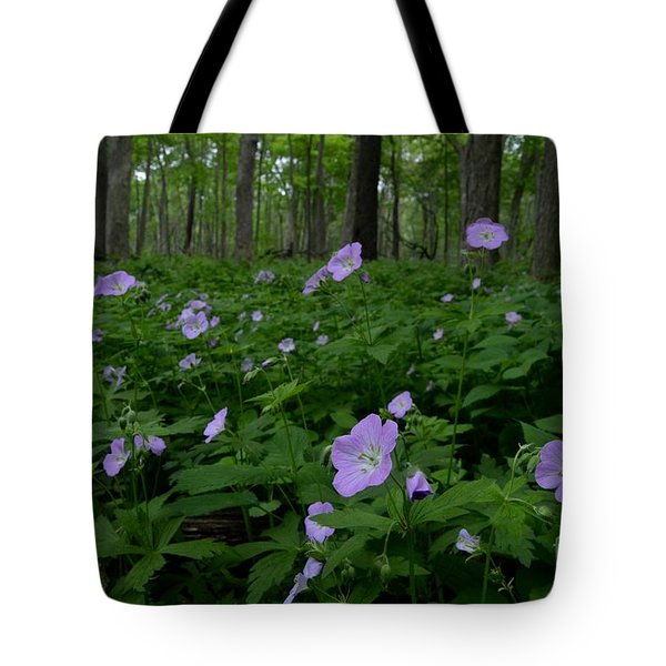 Into The Woods Tote Bag by Tim Good