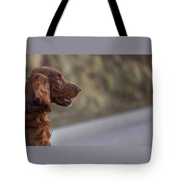 Irish Setter Tote Bag