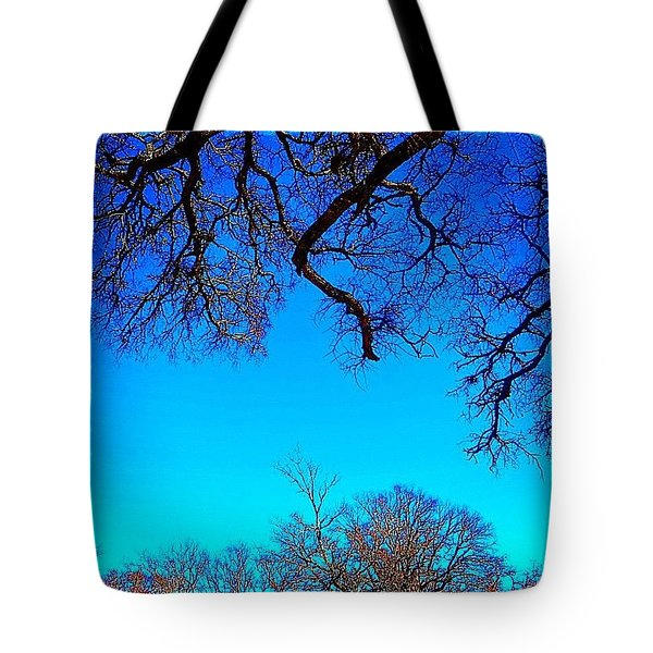 It Has Been Rainy, Dark And Cold.  I Tote Bag