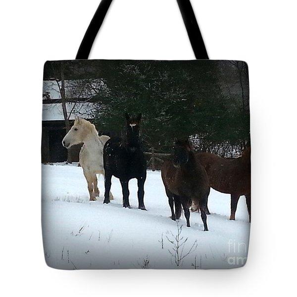 It Snowed Tote Bag
