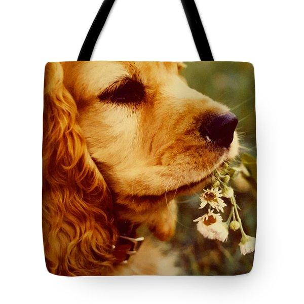 It's Spring Tote Bag