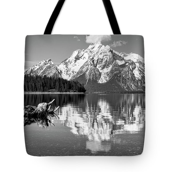Jackson Lake, Gtnp  Tote Bag