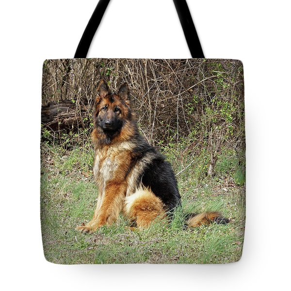 Tote Bag featuring the photograph Jessy by Sandy Keeton
