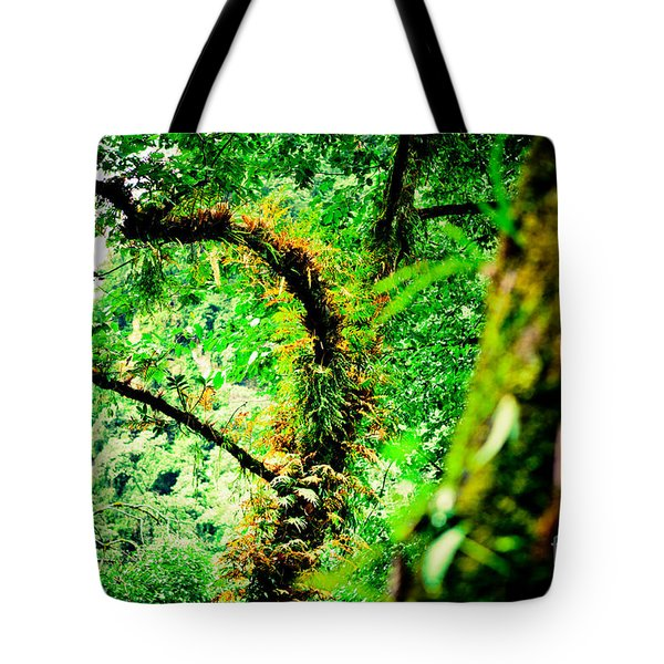 Jungle Annapurna Yatra Himalayas Mountain Nepal Tote Bag