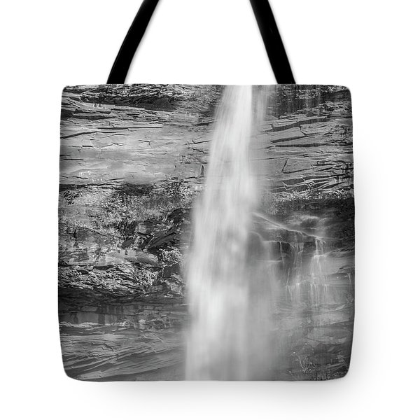 Tote Bag featuring the photograph Kaaterskill Falls Ny by Susan Candelario