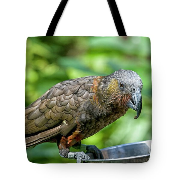 Tote Bag featuring the photograph Kaka by Patricia Hofmeester