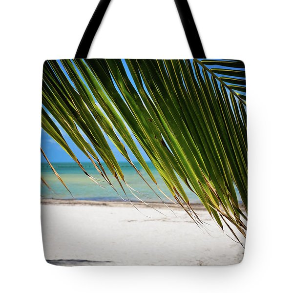 Tote Bag featuring the photograph Key West Palm by Kelly Wade