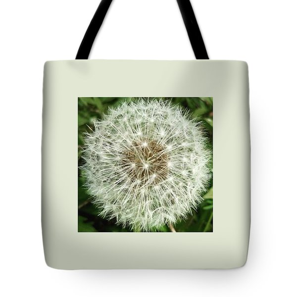Kind Such As The Flower   Tote Bag by Sobajan Tellfortunes