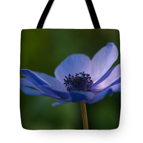 Kissed By The Light Tote Bag