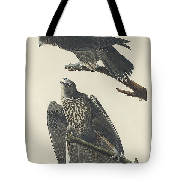 Labrador Falcon Tote Bag by Dreyer Wildlife Print Collections