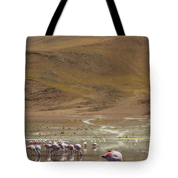 Laguna Colorada, Andes, Bolivia Tote Bag