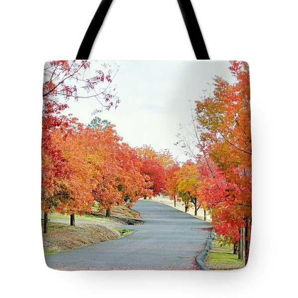 Tote Bag featuring the photograph Last Days Of Autumn by AJ Schibig