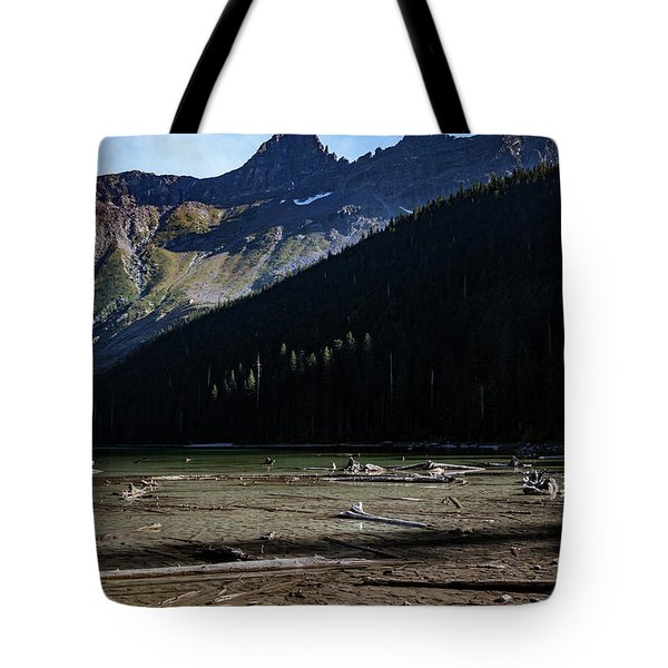 Tote Bag featuring the photograph Late Afternoon On Avalanche Lake by Lon Dittrick