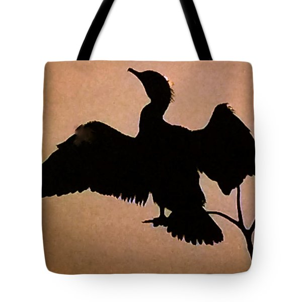 Late Day  Tote Bag