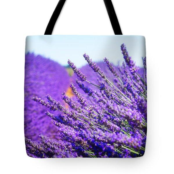 Lavender Field Tote Bag by Anastasy Yarmolovich