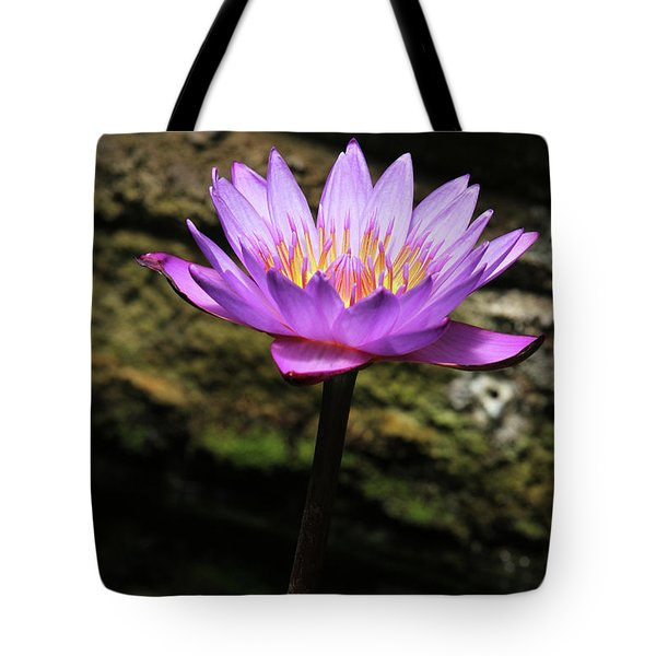 Lavender Water Lily #4 Tote Bag