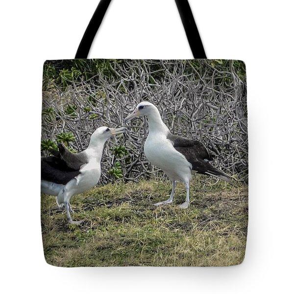 Laysan Albatross Hawaii #2 Tote Bag