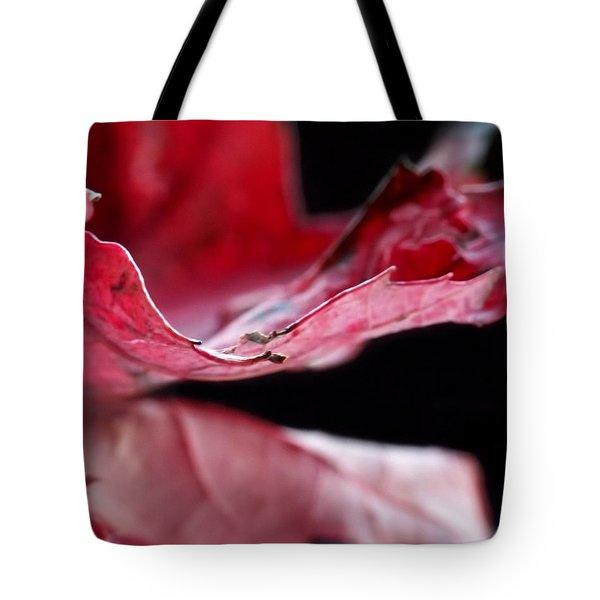 Leaf Study V Tote Bag by Lauren Radke