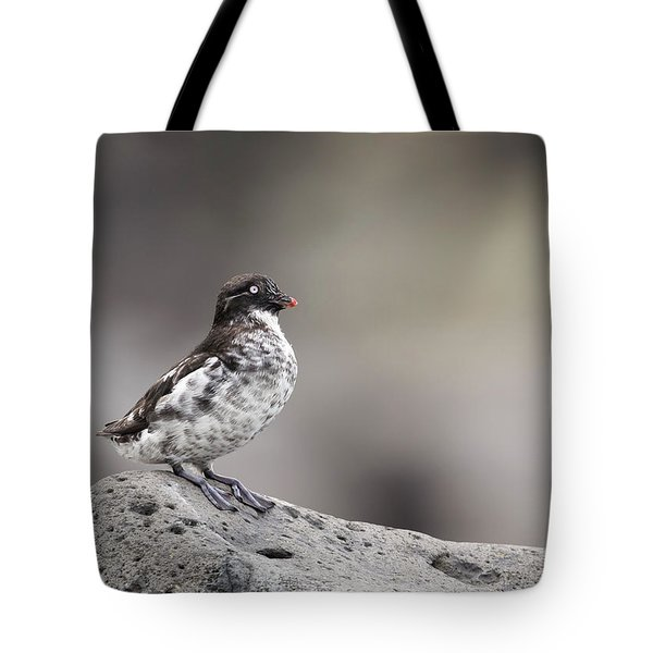Least Auklet Tote Bag