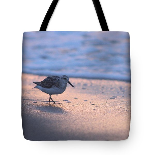 Tote Bag featuring the photograph Least Sandpiper At Dawn by Robert Banach