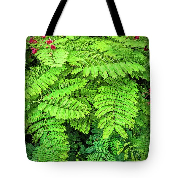 Tote Bag featuring the photograph Leaves by Charuhas Images