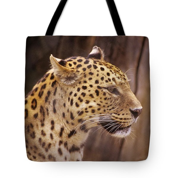 Tote Bag featuring the photograph Leopard by Donald Paczynski