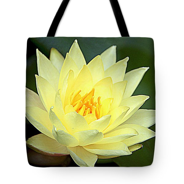 Tote Bag featuring the photograph Lily by Jerry Cahill