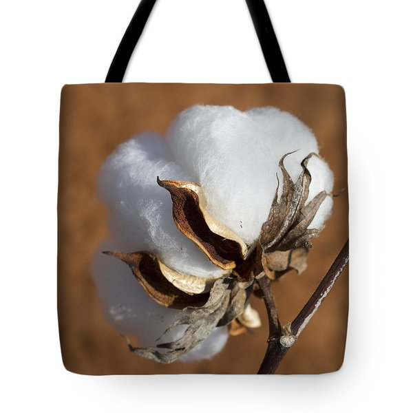 Limestone County Cotton Boll Tote Bag