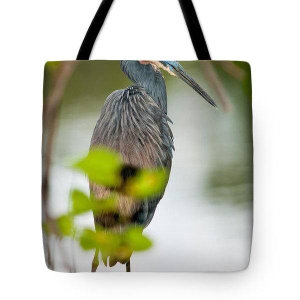 Tote Bag featuring the photograph Little Blue Heron by Christopher Holmes