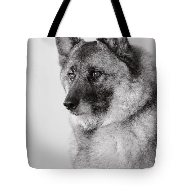 Dog Loki Tote Bag
