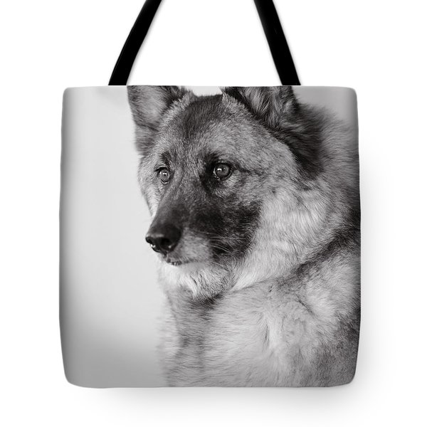 Dog Loki Tote Bag