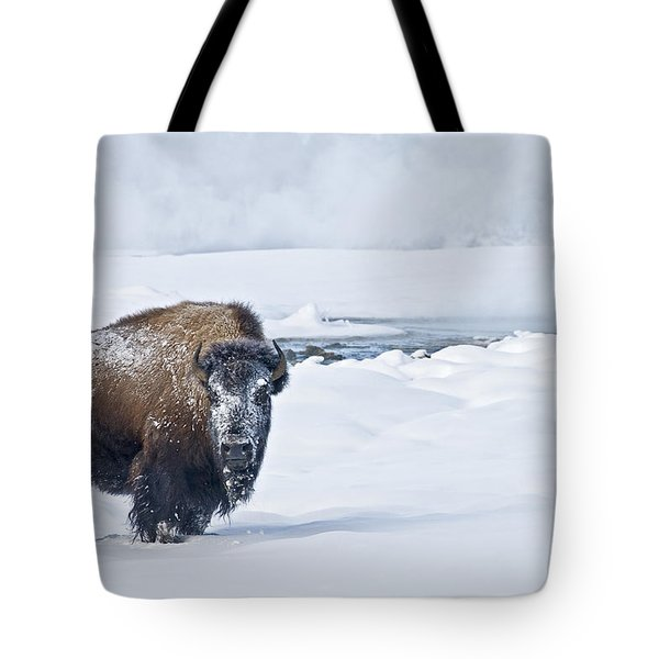 Tote Bag featuring the photograph Lone Bison by Gary Lengyel