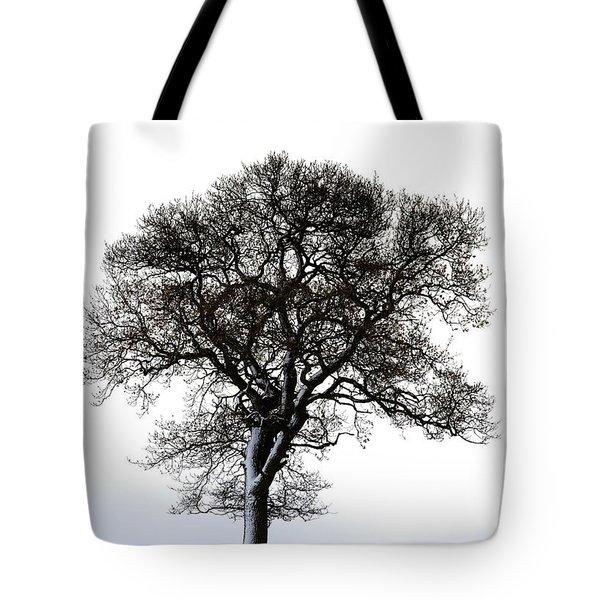 Lone Tree In Field Tote Bag by John Short