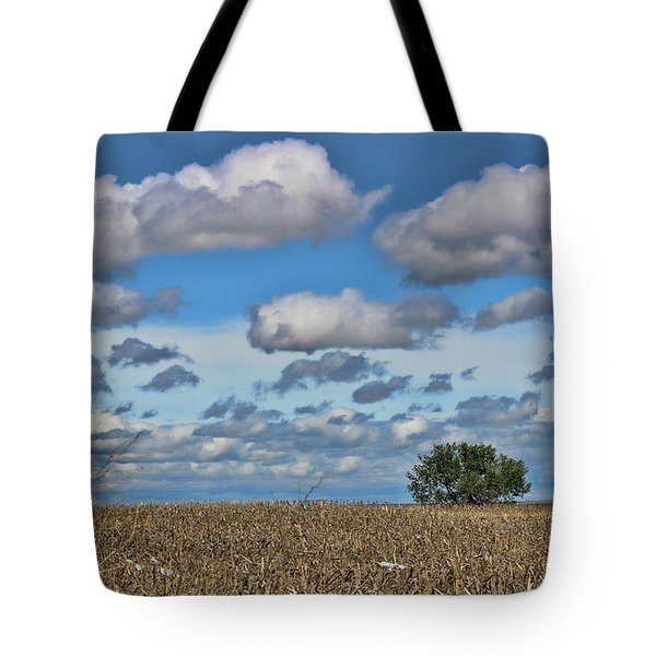 Lone Tree Tote Bag by Sylvia Thornton