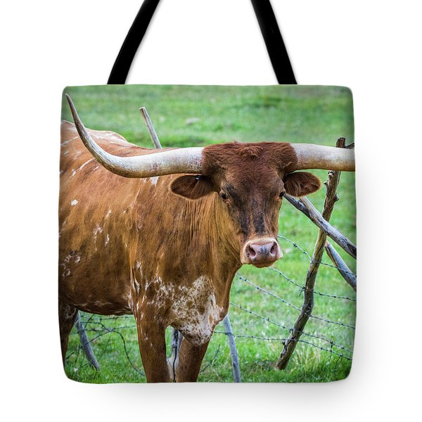 Tote Bag featuring the photograph Longhorn#1 by Vincent Bonafede