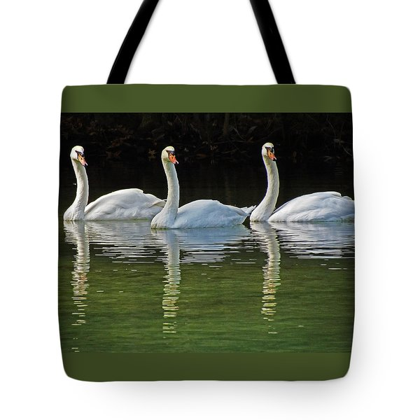 Look Over There Tote Bag by Judy Wanamaker