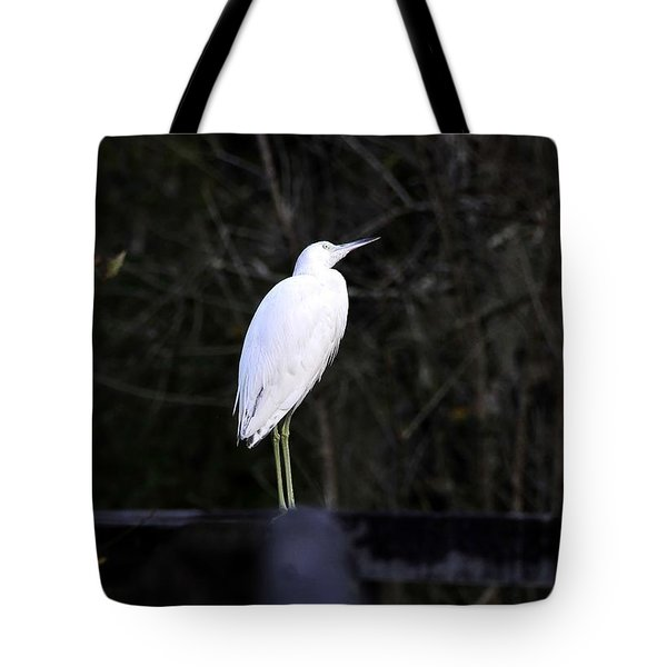 Looking Tote Bag by David Lee Thompson