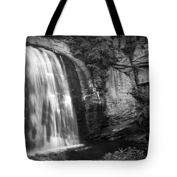 Tote Bag featuring the photograph Looking Glass Falls by Howard Salmon