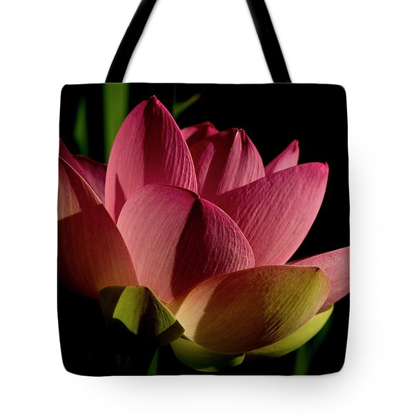 Tote Bag featuring the photograph Lotus Flower 2 by Buddy Scott