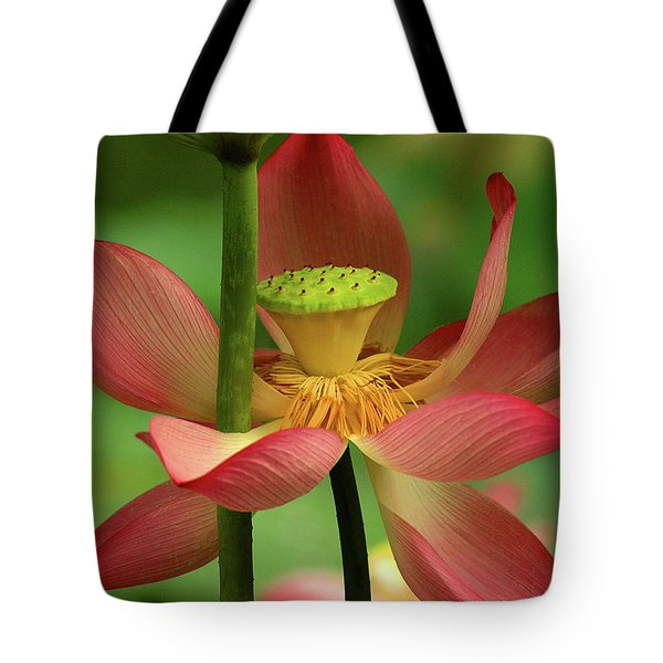 Lotus Flower Tote Bag by Harry Spitz