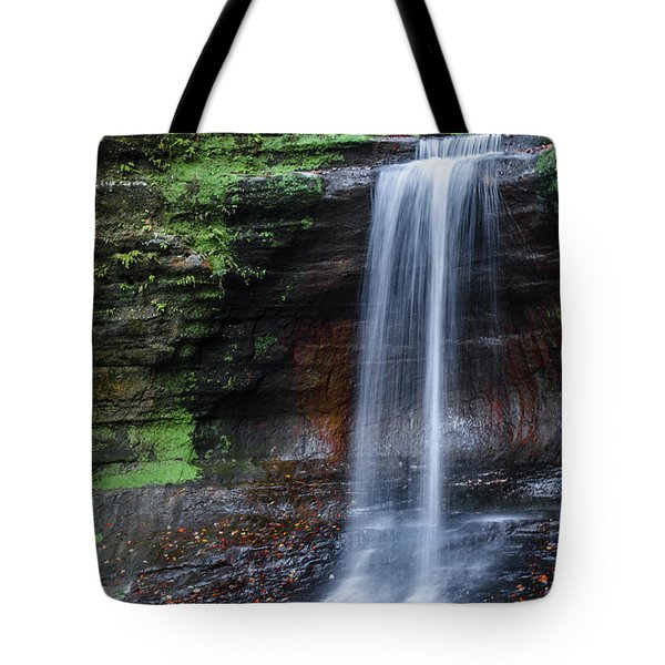 Lower Dells Falls Matthiessen State Park Oglesby Illinois Tote Bag