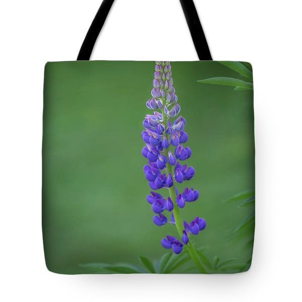 Graceful Lupine Tote Bag