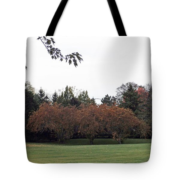 M Landscapes Fall Collection No. Lf68 Tote Bag