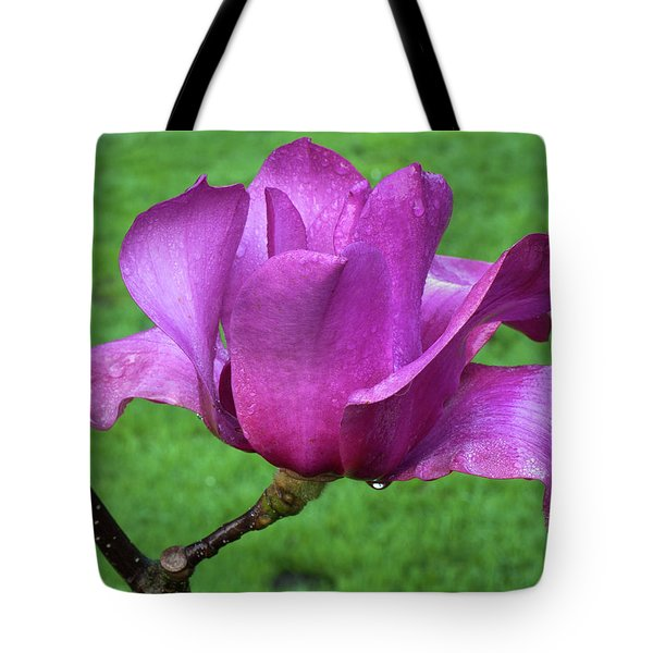 Tote Bag featuring the photograph Magnolia by Catherine Lau