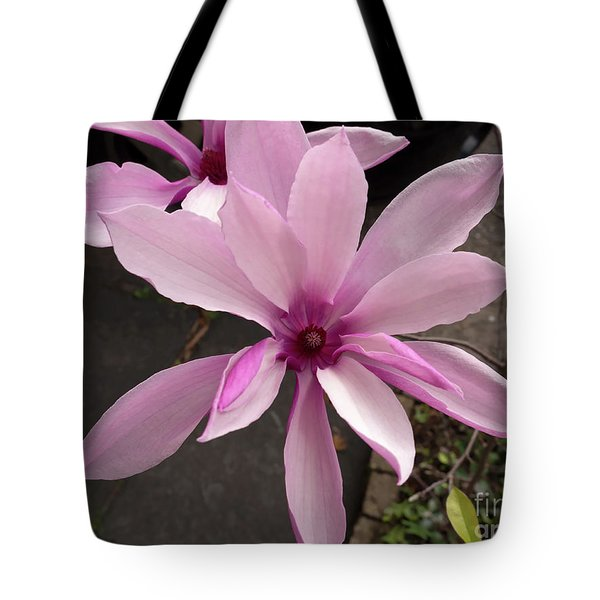 Magnolia Tote Bag by Louise Heusinkveld